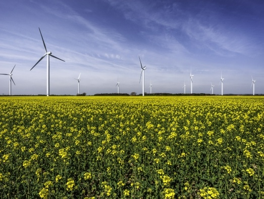Wind farm showing wind turbines