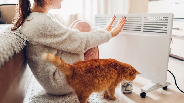 lady and cat getting warm with an electric heater