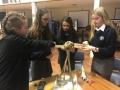 Students from Thomas Mills and Farlingaye High Schools at the Sizewell women in engineering event