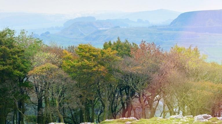 Countryside near West Burton