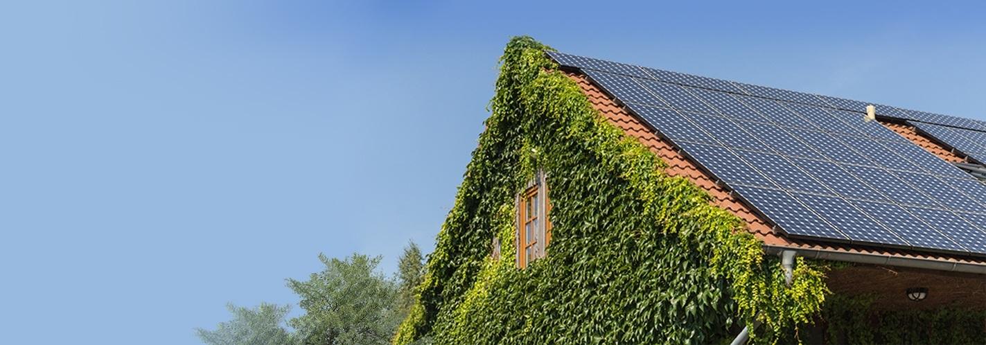 Solar energy facts | Advantages and disadvantages | EDF Energy