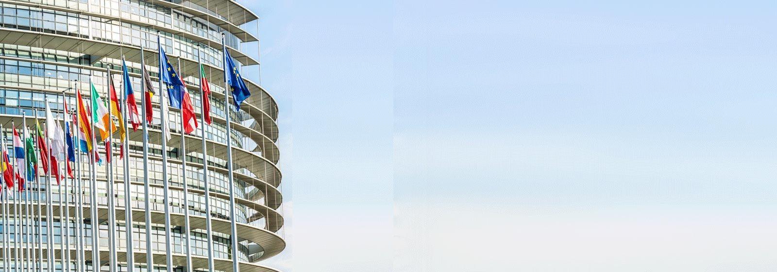Energy Savings Opportunity Scheme (ESOS)