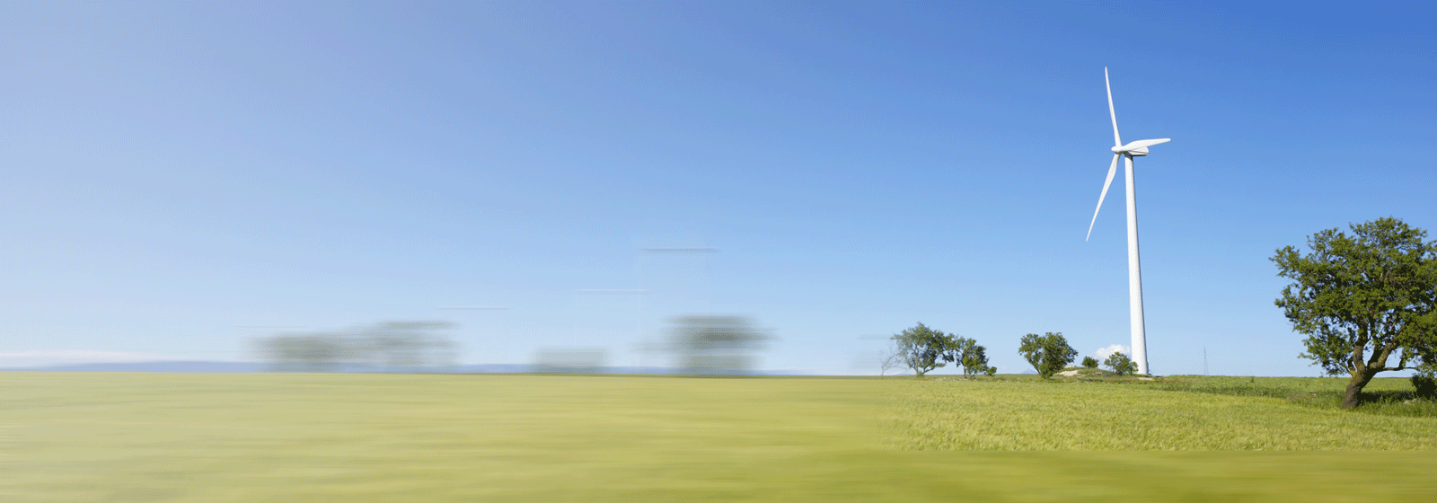 Field with a wind farm