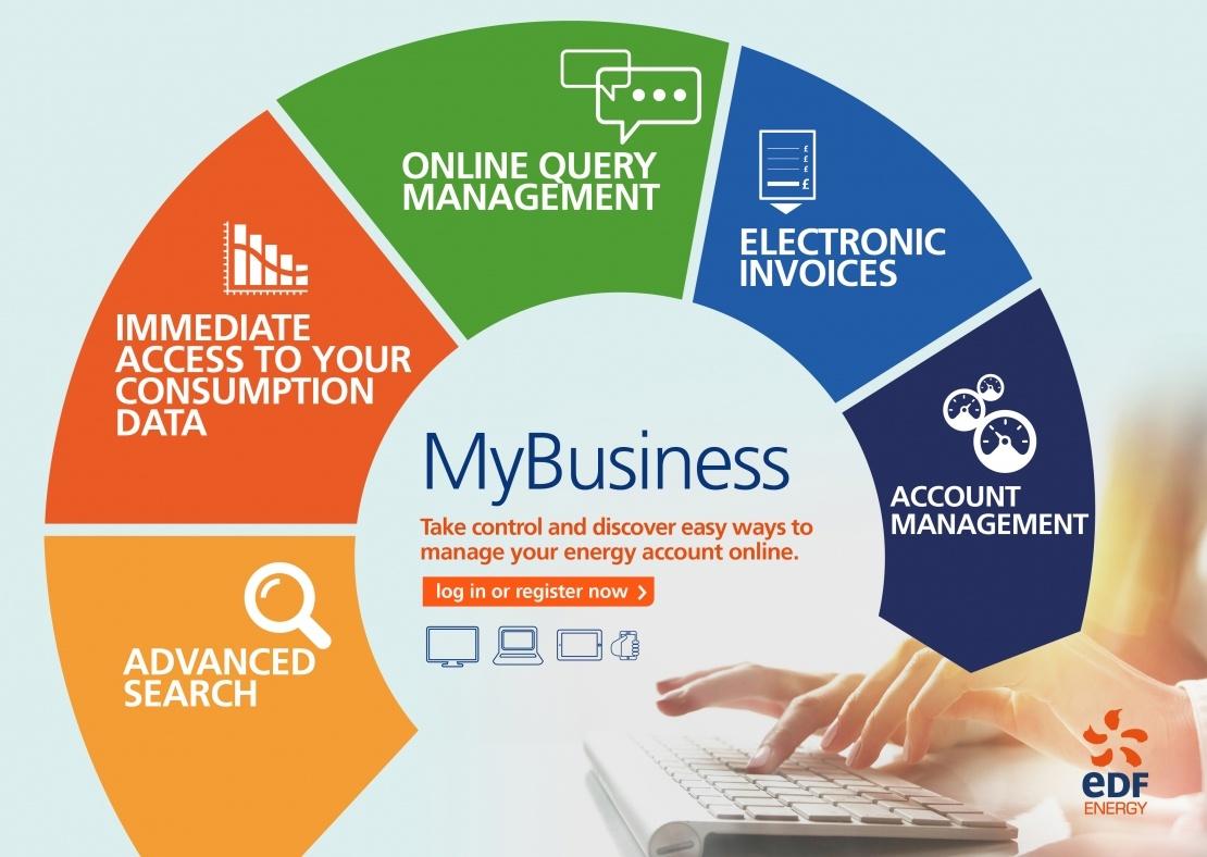 Large Business Customer Account Management Edf Energy