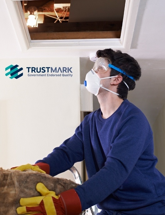TrustMark accredited loft insulation installer climbing ladder